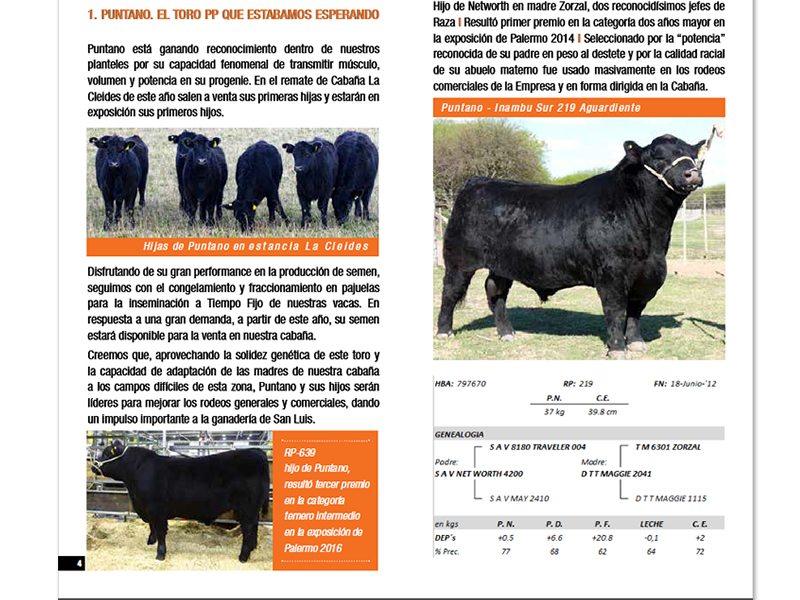 serbeef_remate2016_04